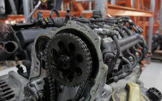 Какое моторное масло для цепных двигателей