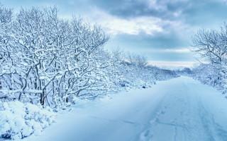 Можно ли заливать зимой минеральное масло моторное